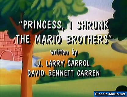 /princess_i_shrunk_the_mario_bros